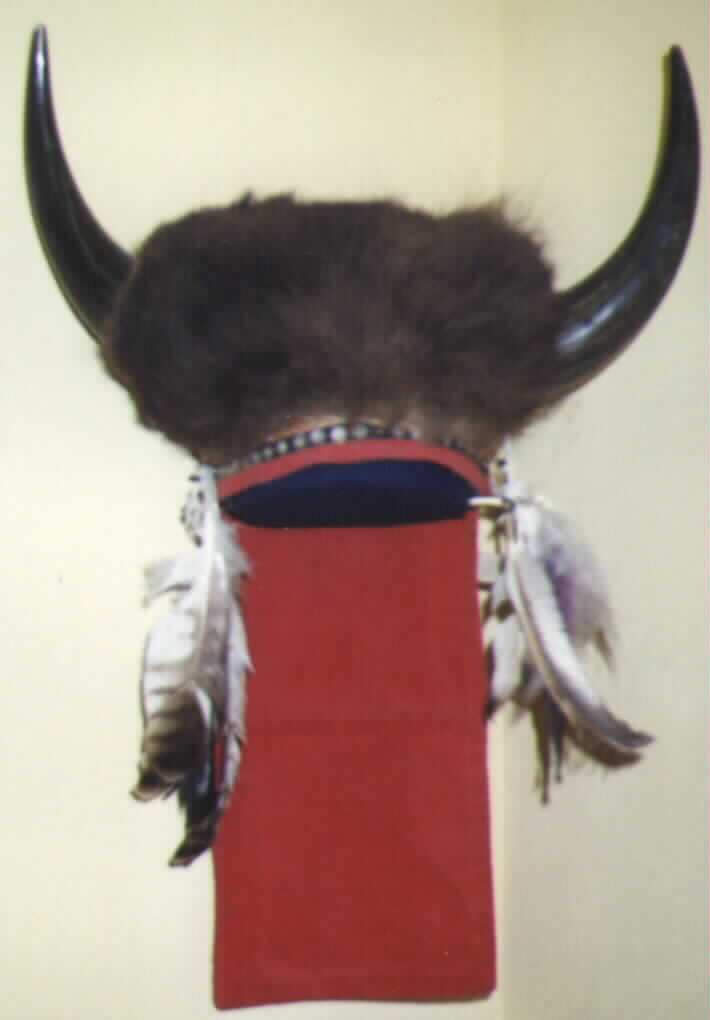 The Comanche Tribes